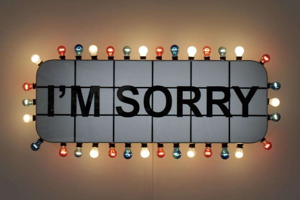 Adel Abidin, I'm Sorry, 2008. Lightbox, 68.2 x 171 x 29.8 cm.